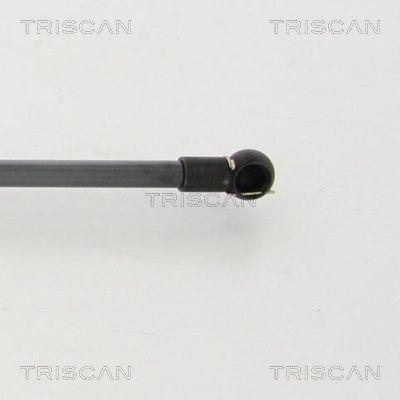 Gasdruckdämpfer TRISCAN 871040229 Erfahrung