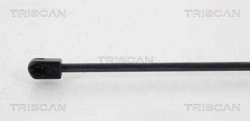 Amortiguador de Maletero TRISCAN 871067216 conocimiento experto