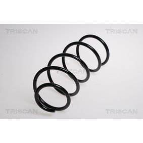 Coil Spring with OEM Number 31 33 6 767 365