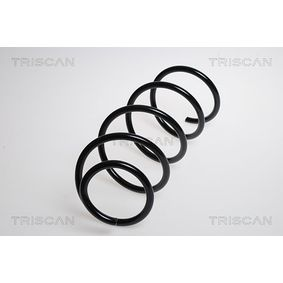 Coil Spring with OEM Number 31 33 6 767 367