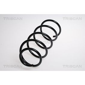 Coil Spring with OEM Number 3133 6764 382