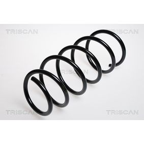 Coil Spring with OEM Number 8200193020