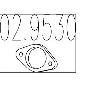 Golf 5 1.4 16V Auspuffdichtung MTS 02.9530 (1.4 16V Benzin 2006 BUD)