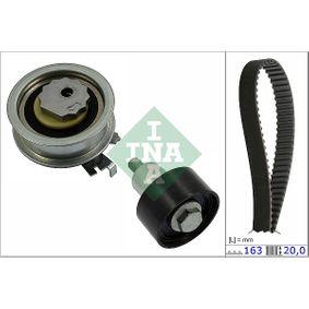 Polo 6R 1.2TSI 16V Zahnriemensatz INA 530 0592 10 (1.2TSI 16V Benzin 2019 CJZC)
