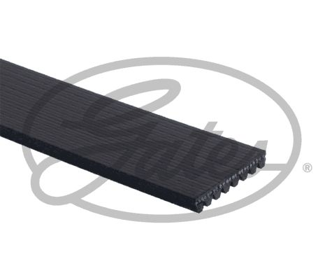 Ribbed Belt GATES 865310686 rating