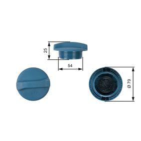 Tapón, depósito de refrigerante con OEM número 1H0121321A