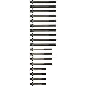 REINZ 14-32147-01 Bewertung