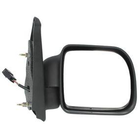 Renault Kangoo KC 1.5dCi Außenspiegel BLIC 5402-04-9228151P (1.5dCi Diesel 2012 K9K 714)