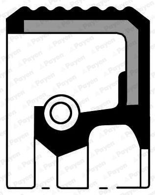 Simmerring PAYEN NF870 4044197140527