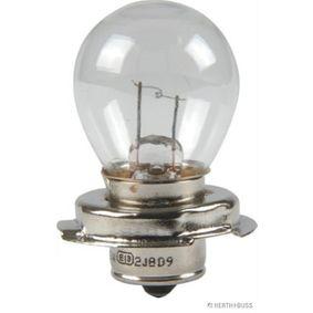 Bulb 12V 15W, S3, P26s 89901187