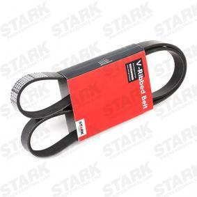 V-Ribbed Belts SK-6PK1310 3 (BL) 2.0 MZR MY 2014