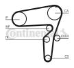 CONTITECH Zestaw rozrządu FIAT Il. zębów: 199