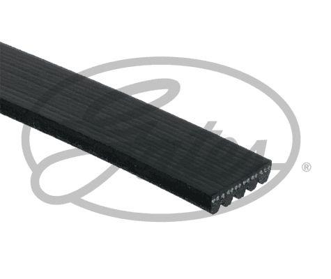 Ribbed Belt GATES 865310755 rating