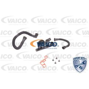 Kit riparazione, Ventilazione monoblocco con OEM Numero 06F103483E