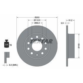 Bremsscheibe Bremsscheibendicke: 9,9mm, Ø: 253mm mit OEM-Nummer 5Q0 615 601 F