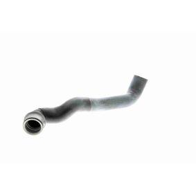 VAICO Bremsbelagsatz, Scheibenbremse V10-8146-1 für AUDI A4 Cabriolet (8H7, B6, 8HE, B7) 3.2 FSI ab Baujahr 01.2006, 255 PS