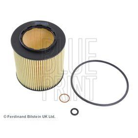 Oil Filter ADB112102 1 Hatchback (E87) 130i 3.0 MY 2010