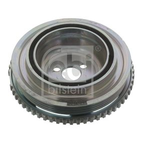 Belt Pulley, crankshaft 44416 PANDA (169) 1.2 MY 2020