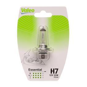 Bulb, spotlight H7, 55W, 12V, ESSENTIAL 032008