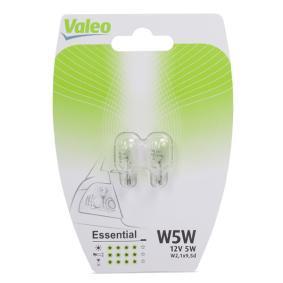 Bulb, indicator Essential 032116