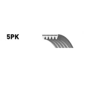 Keilrippenriemen 5PK838 5 Touring (E39) 520d 2.0 Bj 2001