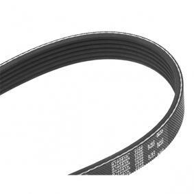 V-Ribbed Belts 6PK975 3 (BL) 1.6 MZR CD MY 2011