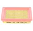Air filter CHAMPION CAF100619P Filter Insert