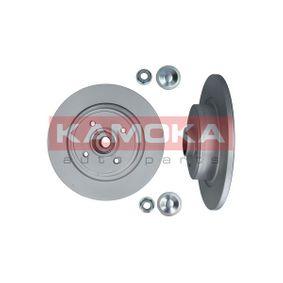KAMOKA Disco de travão 1031134 com códigos OEM 7701206328
