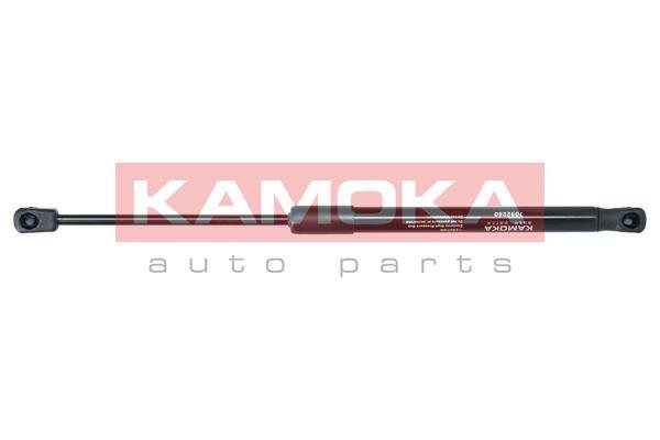 Bremsscheibe KAMOKA 1036068 Erfahrung