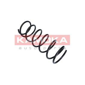 2110053 KAMOKA 2110053 in Original Qualität
