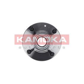 2009 Hyundai Coupe gk 2.0 Wheel Bearing Kit 5500041