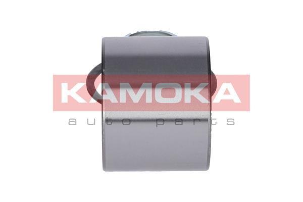 5600065 KAMOKA populares