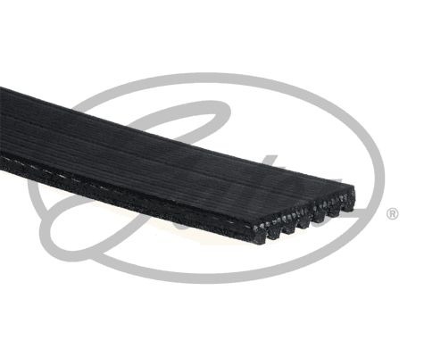V Ribbed Belt GATES 7PK1832 expert knowledge