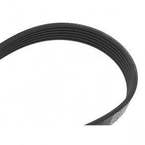 V-Ribbed Belts 6PK1660 OCTAVIA (1U2) 1.9 TDI MY 2000