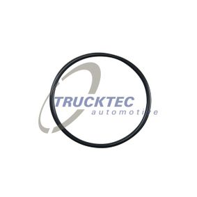 Dichtung, Thermostat 02.67.006 CRAFTER 30-50 Kasten (2E_) 2.5 TDI Bj 2009