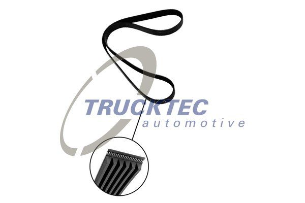 TRUCKTEC AUTOMOTIVE  07.19.147 V-Ribbed Belts Length: 905mm, Number of ribs: 6