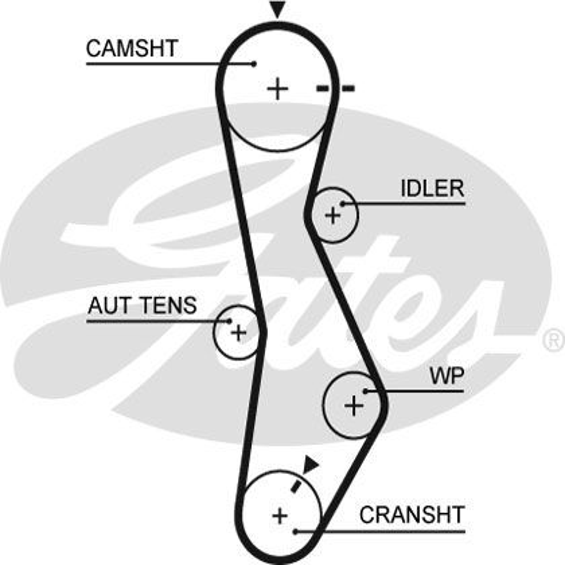 Cam Belt Kit K015579XS GATES T43133 original quality