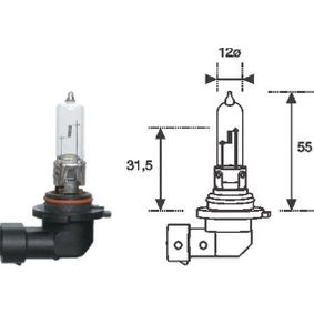Glühlampe, Fernscheinwerfer HB3 12V 65W P20d 002577200000 OPEL Astra G CC (T98)