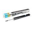 OEM BILSTEIN 20-250256 JAGUAR XK Shock absorbers