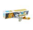 OEM Stoßdämpfer von BILSTEIN mit Artikel-Nummer: 22-242594