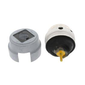 CORTECO  80005233 Lagerung, Motor