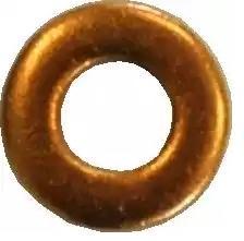 Dichtring, Düsenschacht DELPHI 9001-850C Bewertung