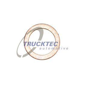 Dichtring mit OEM-Nummer 5096976AA