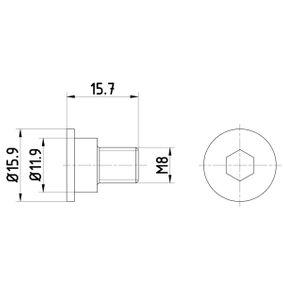 Accesorios y Piezas BMW 3 Coupé (E46) 318 Ci de Año 03.2005 150 CV: Tornillo, disco de freno (TPM0003) para de TEXTAR