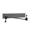 RIDEX Tiranti barra stabilizzatrice LANCIA Assale anteriore bilaterale, Sx, Assale anteriore