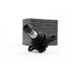 Fahrgestell: RIDEX 2462S0019 Trag- / Führungsgelenk
