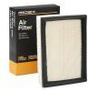 RIDEX Air filter BMW Filter Insert