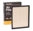 RIDEX Filtro aria motore JEEP Cartuccia filtro, Filtro aria ricircolo, con griglia protettiva