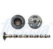 OEM Nockenwelle FRECCIA 8037050 für VW