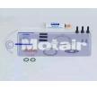 OEM Juego de montaje, turbocompresor MOTAIR 446119